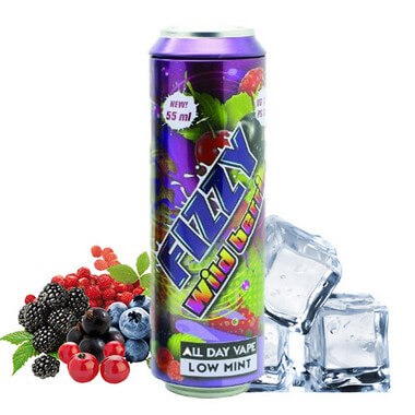 Fizzy Wild Berries 55ml - Fizzy Juice -  Mohawk & Co