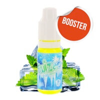 Booster Icee Mint - Fruizee